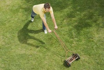 Artifical lawns require less maintenance than real grass, but also have disadvantages.