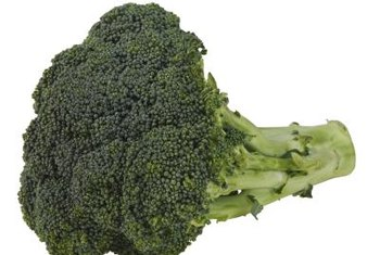 Harvest your broccoli when the vegetable head is 3 to 6 inches across.