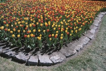 Rock landscape edging gives your flower beds a charming rustic look.