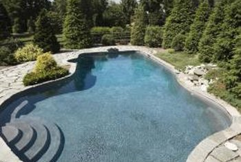 Plants help to soften the look of harsh concrete and cement lines of the pool.