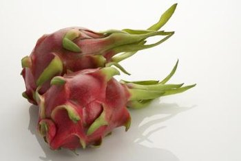 Dragon fruit cacti grown from seed can have varying stem and fruit characteristics.