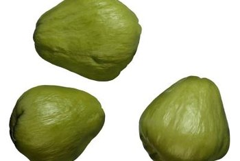 Plant the entire fruit to grow chayote squash.