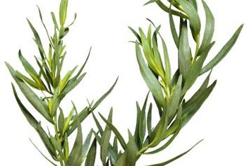 Dried herbs, such as tarragon, add seasoning to you meal and provide potassium.