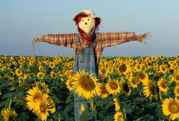 Scarecrows repel many wildlife creatures, including deer.