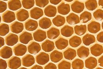 Beeswax, an ingredient in grafting wax, comes from honeybee honeycomb.
