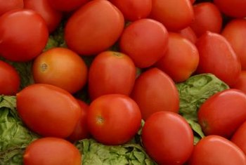 San Marzano tomatoes are traditionally used for sauce.