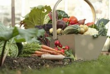 Develop your landscape further by adding growing space for fresh, delicious produce.