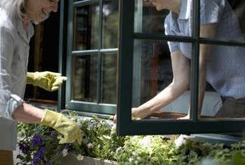 Fill your window boxes with perennials for year-round interest and easy maintenance.