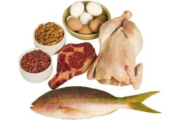 The body gets essential amino acids from food sources of protein.