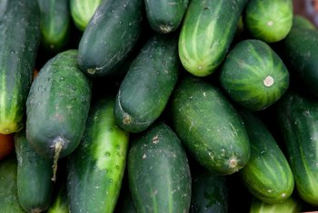 Cucumbers produce both male and female flowers on the same plant.