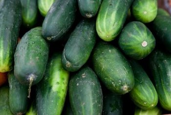For healthy, easy to pick cucumbers, stake the plants.
