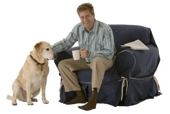 Removable, washable slipcovers are practical in homes with pets.