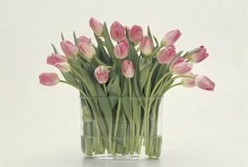 Picking healthy tulips results in an attractive arrangement.