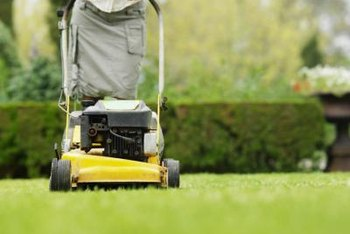 Sharp lawn mower blades cut grass properly, helping it fend off fungal diseases.