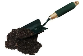 Dig a small amount of soil to test for pH.