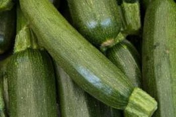 Zucchinis are susceptible to a number of diseases and pests.