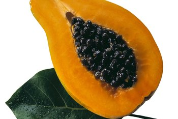 Papaya seeds are difficult to germinate when the gelatinous sarcotesta remains intact.