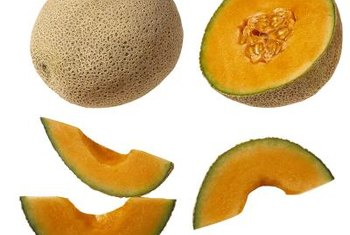 The canteloupe is a muskmelon cultivar with nets on its skin.
