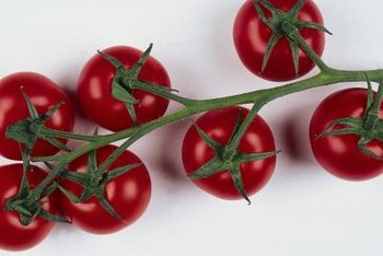 Vine-ripened tomatoes are rounder and cleaner when they don't lie on the ground.