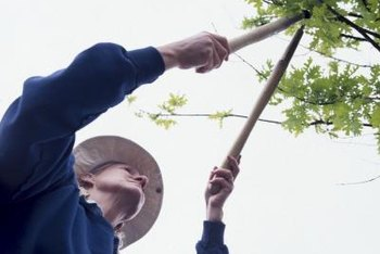 Use loppers to prune tree branches.