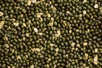 Mung beans belong to the pea family.