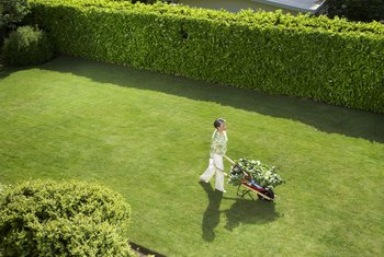 How to Decrease Road Noise in Your Backyard | Home Guides ...