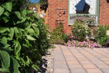 Borders and edging soften the look of hard surfaces such as patios, walkways and driveways.