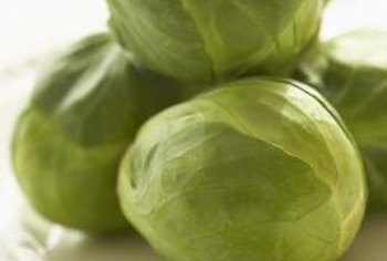Grow pest-free Brussels sprouts using the right techniques.