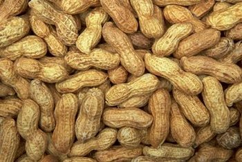 Peanuts produce one to three nuts per pod.