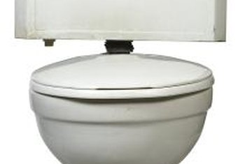 Cover the toilet tank and lid to protect them from paint.