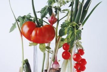 Onions and garlic are compatible with tomatoes and cabbages.