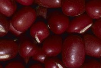 Kidney beans take on a reddish-brown hue when fully ripe.
