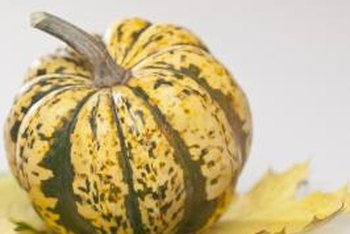 Gourds make terrific fall decorations.