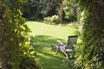 Ideas to Make a Backyard More Private From the ...