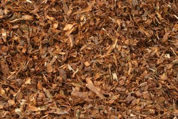 Cover the landscape fabric with an attractive mulch.