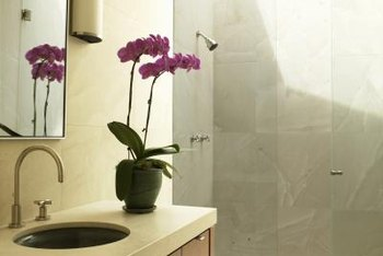 Bathroom humidity is good for orchids if leaves and roots do not become waterlogged.