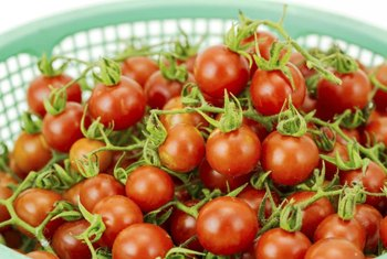 Compact cherry tomato varieties do well in pots.