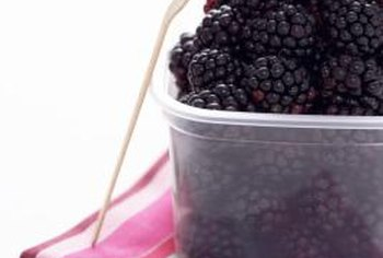 Fruits like blackberries are high in fiber and full of disease-fighting antioxidants (see reference 3).