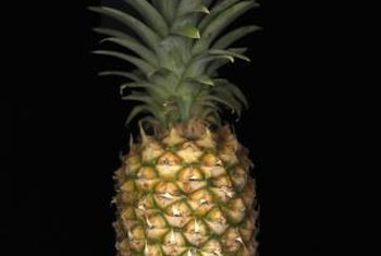 You can grow tasty pineapples in your backyard.