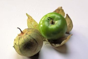 Tomatillos are also called husk tomatoes.