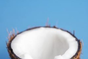 The seed (botanically a drupe) of the coconut palm is gluten-free.