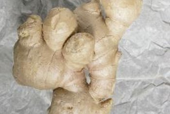 Planting ginger from a rhizome is more successful than by seed.