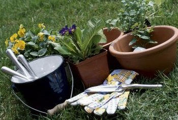 Clean your pots at the beginning or end of the season, though the beginning is best.