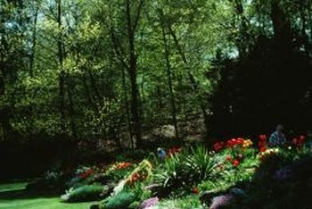 Use mounds to arrange plants in tiers or add height for privacy.