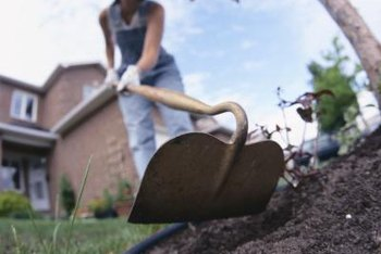 Tilling by hand is only suitable for small areas requiring new sod.