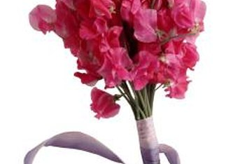 Sweet peas make excellent cut flowers.