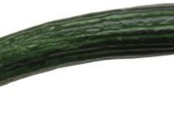 Burpless cucumbers are popular in salads and on relish trays.