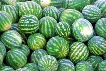 All watermelons have green rinds, regardless of their interior color.