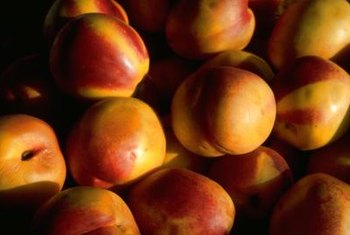 Nectarines are a kind of peach without fuzz.
