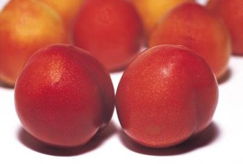Nectarines lack fuzz and tend to be smaller than peaches.